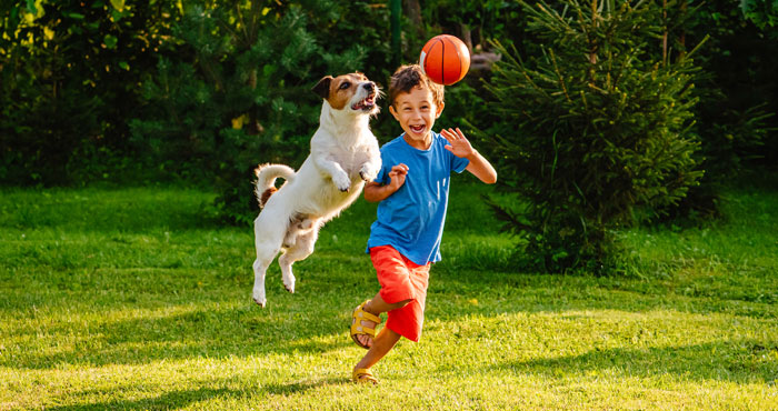 Boy & Dog Playing Outside